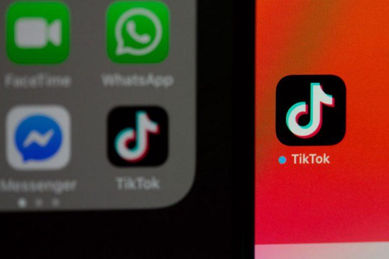 WebApps Download Video TikTok